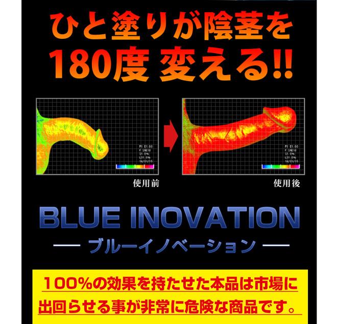 ブルーイノベーション02