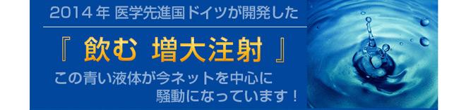 ジシトルリンブループログラム01