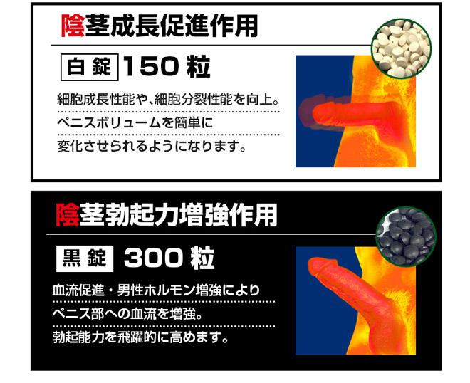 ゲノムバンクX03