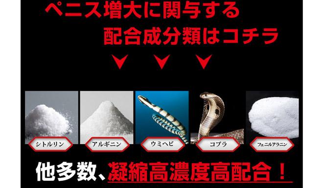 タキオン10