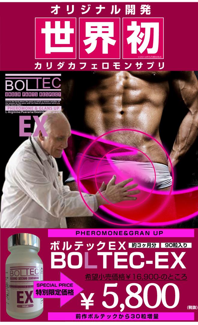 ボルテックEX15